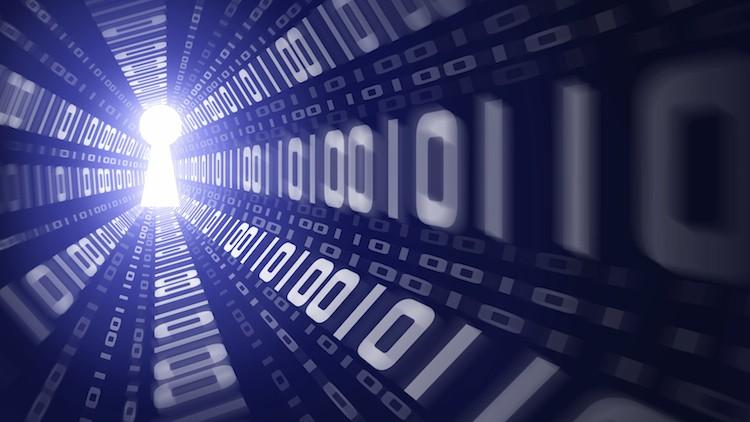 Tom Burton: can open source cure Canberra's Kremlin web?