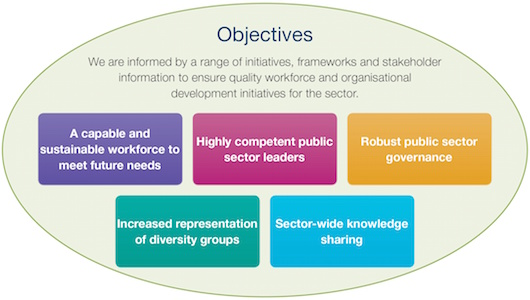 Objectives of the Centre for Public Sector Excellence