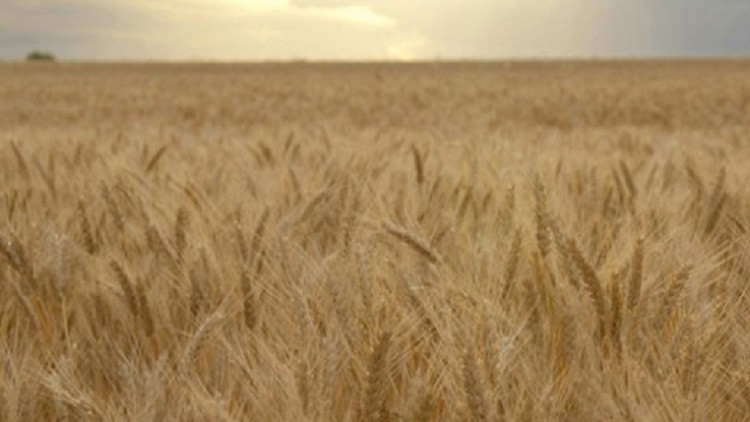 Food standards body avoids threat of regulatory capture