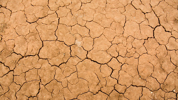 Ross Garnaut: the next chapter in Australian climate change policy