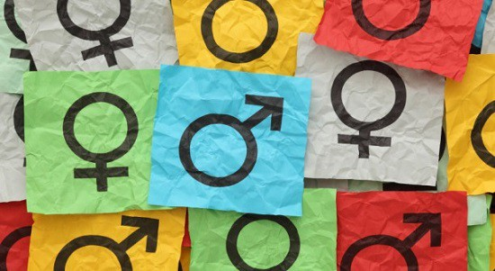 Tasmania's top mandarin targets SES gender parity, simplified recruitment
