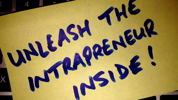 Transformation nation: set free the public sector's intrapreneurs