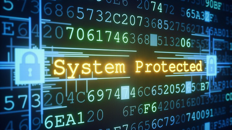 Finance orders up more DDOS protection for government websites