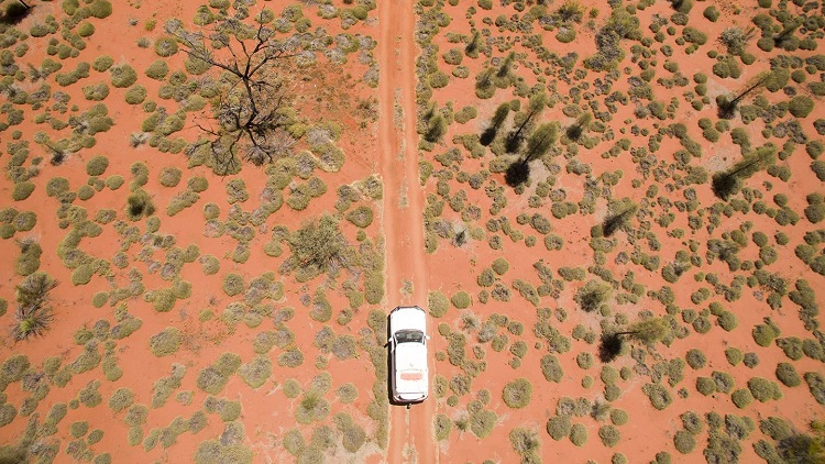 How seven councils joined to digitally connect Queensland's most remote areas