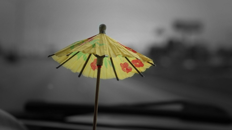 Cocktail umbrella in a monsoon: public servants watch as public trust abused