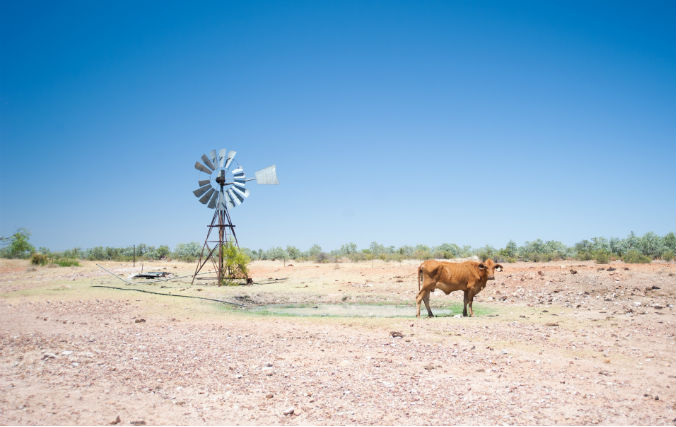 Budgeting for drought