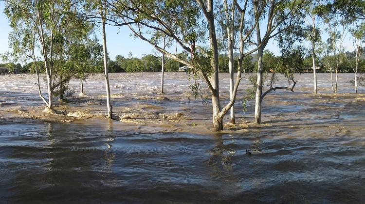 Labor argues federal flood-recovery agency a needless layer of bureaucracy