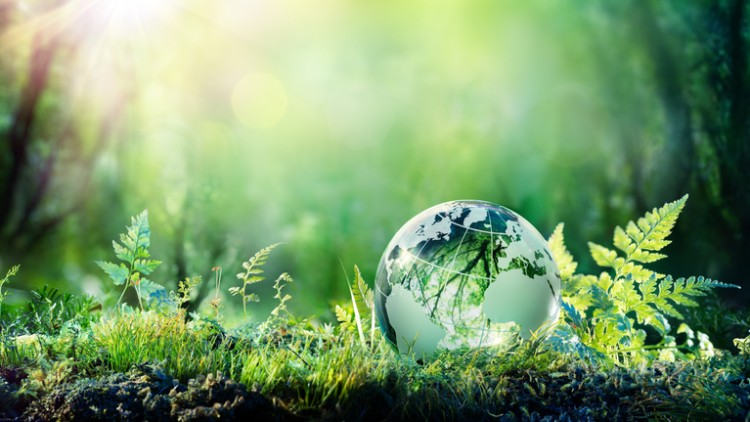 NSW EPA seeks Executive Director, Programs and Engagement