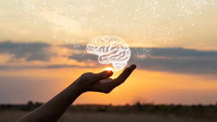 Peeling the mandarin: organisational change and mental health