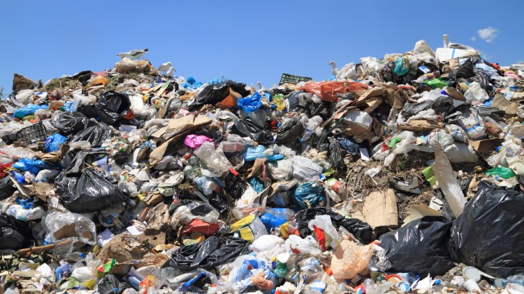 Are NSW and VIC rubbish at recycling?