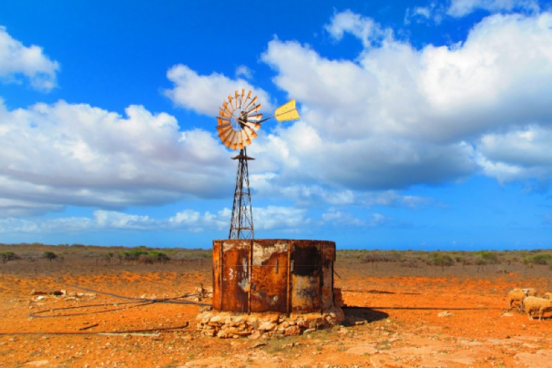 Drought policy? Government handouts won't prepare broadacre agriculture for a self-reliant future