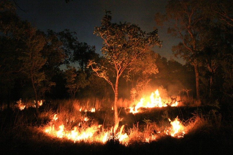 Tasmania turns to traditional methods for bushfire management