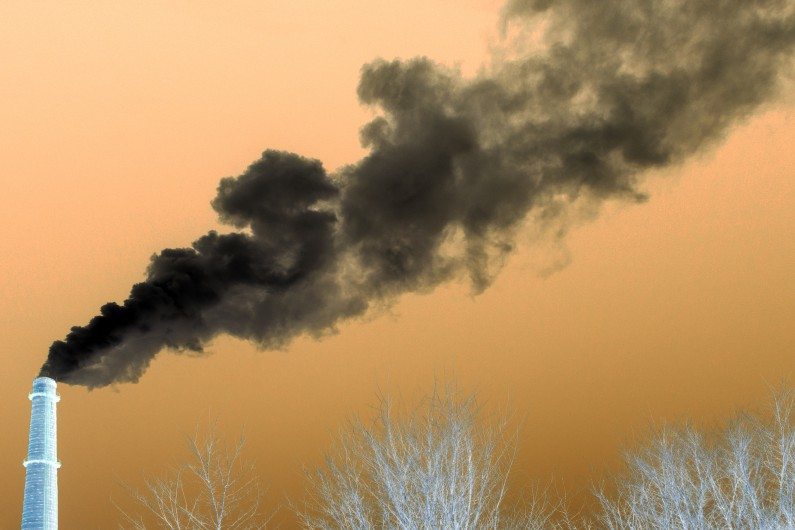 What's the difference between carbon negative and carbon neutral?