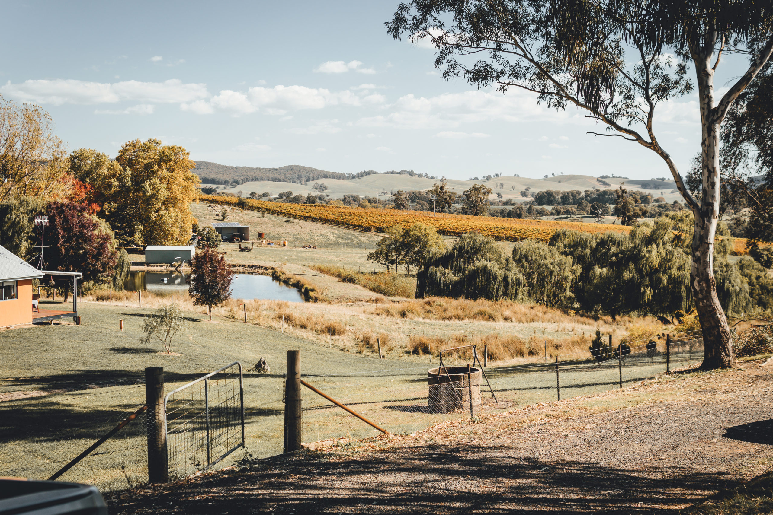 Can environmental conservation mitigate the impact of recession on regional Australia?