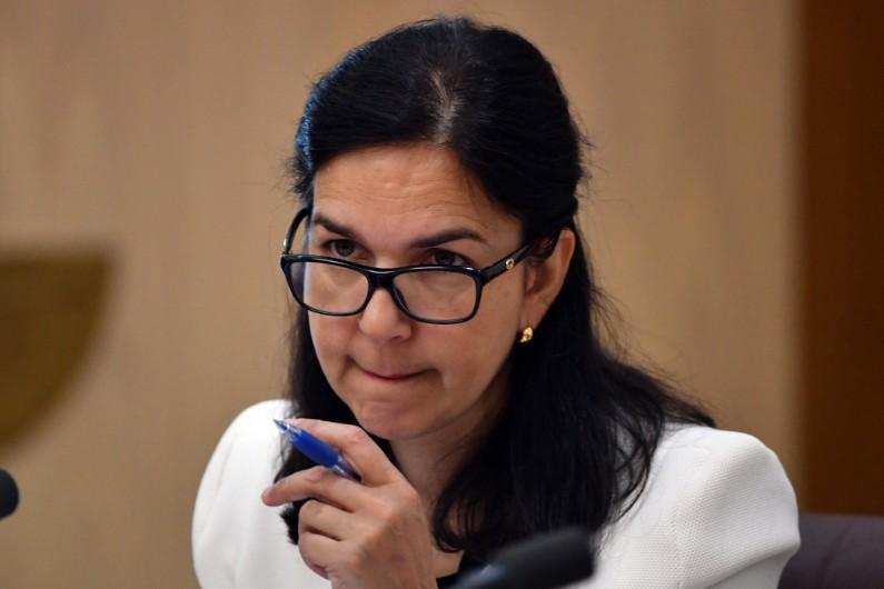 Ex senator Lisa Singh joins Twiggy Forrest's anti-modern slavery organisation