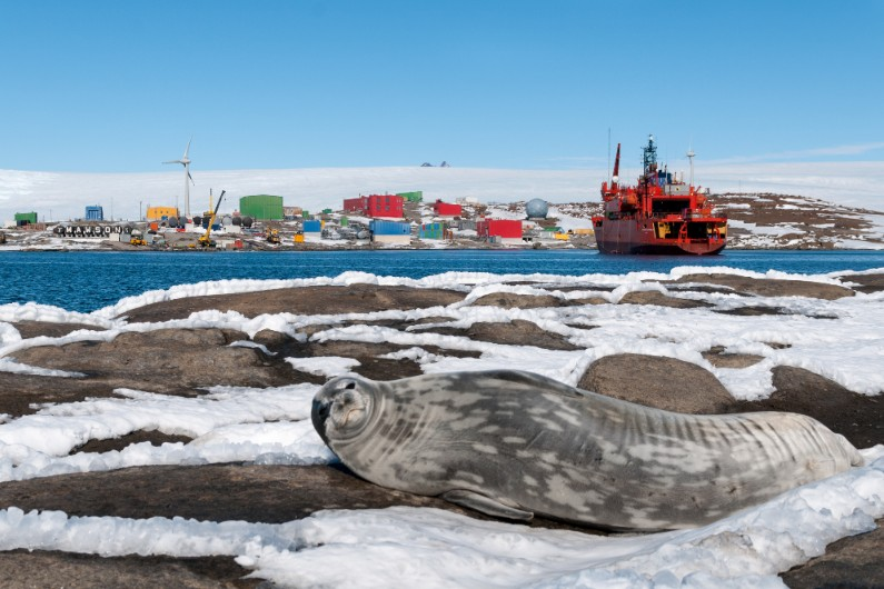 From science to film festivals: life as a public servant in Antarctica
