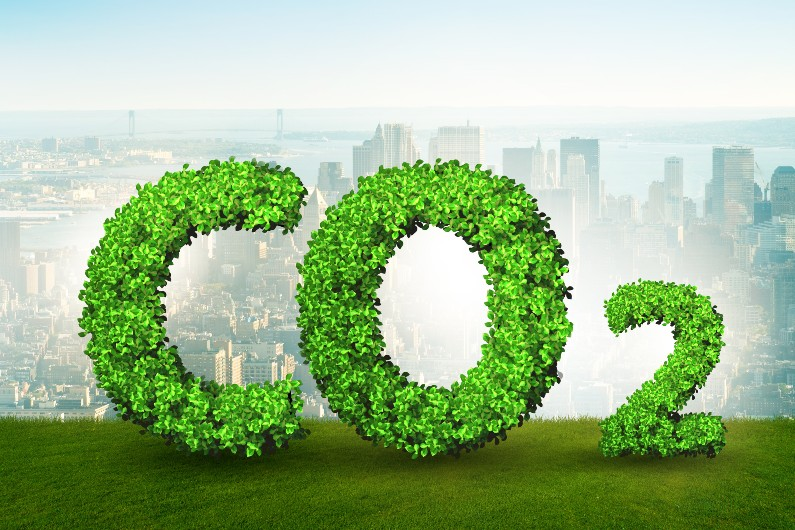 Net-zero, carbon-neutral, carbon-negative … confused by all the carbon jargon? Then read this