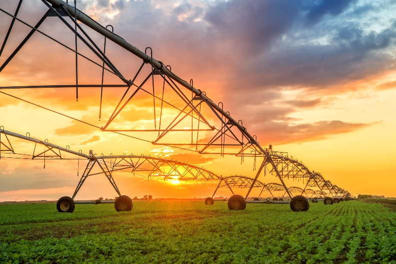NSW water public servants caught favouring irrigator groups week after ICAC blasted them over same issue