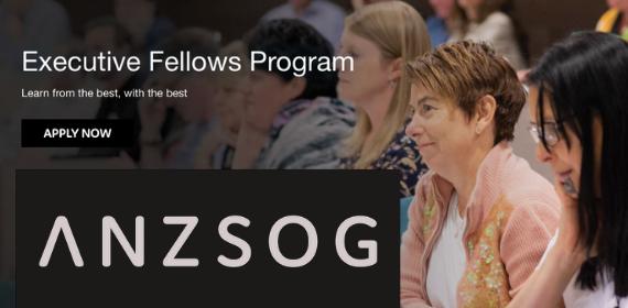 Executive Fellows Program image