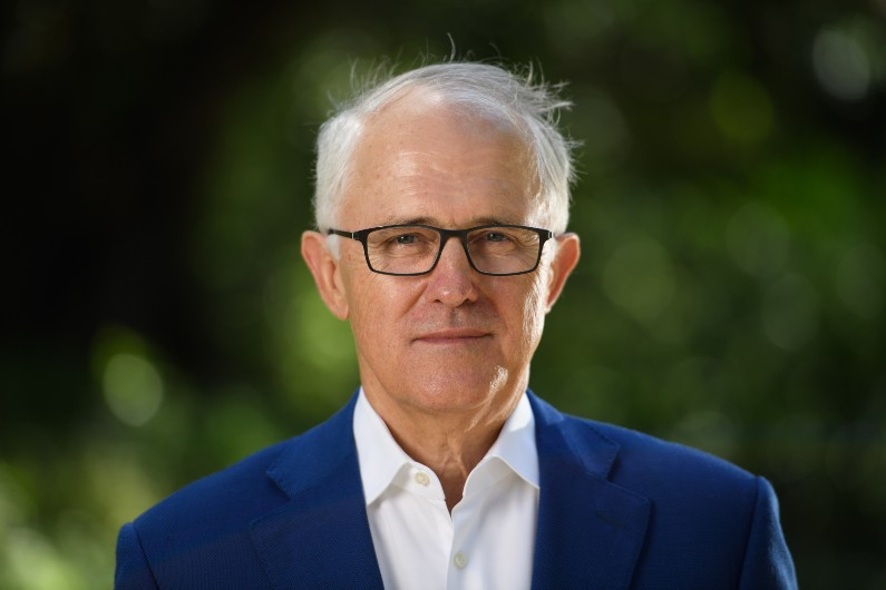 Turnbull to lead NSW's net zero emissions board