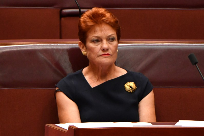 The family law inquiry was largely pushed by One Nation leader Pauline Hanson.
