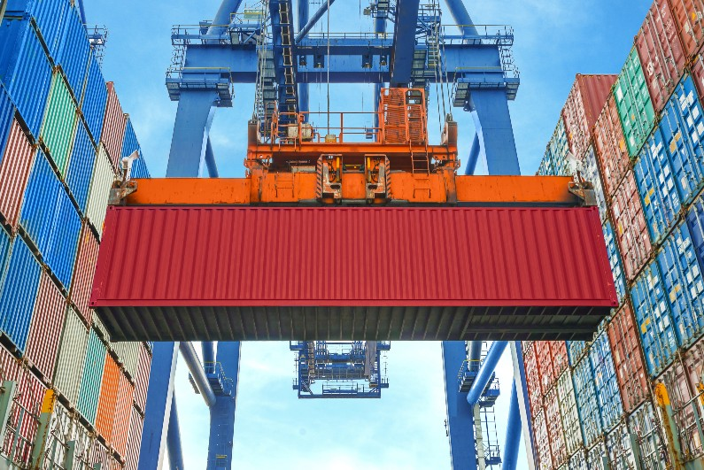 Shore crane loading containers in freight ship, how to detect pests