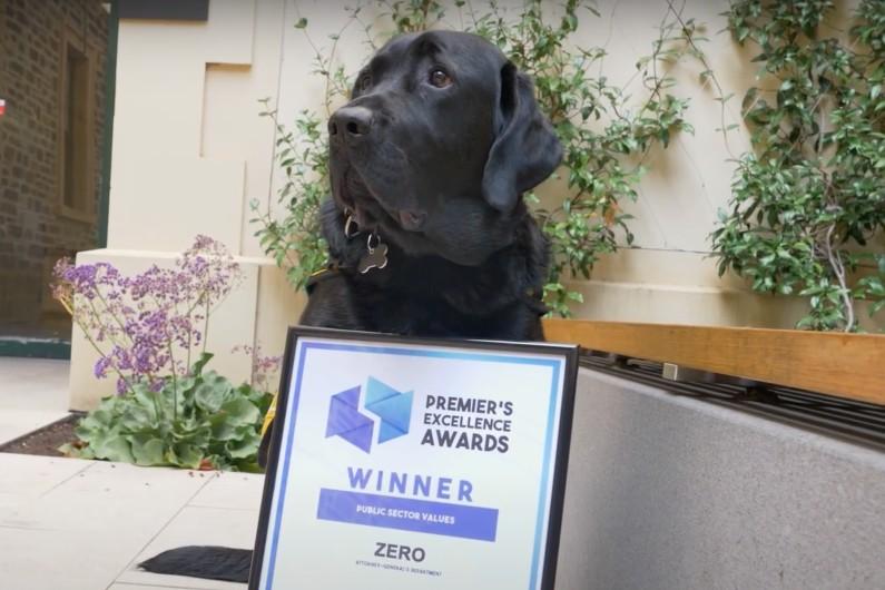 Court companion pup receives SA public sector award