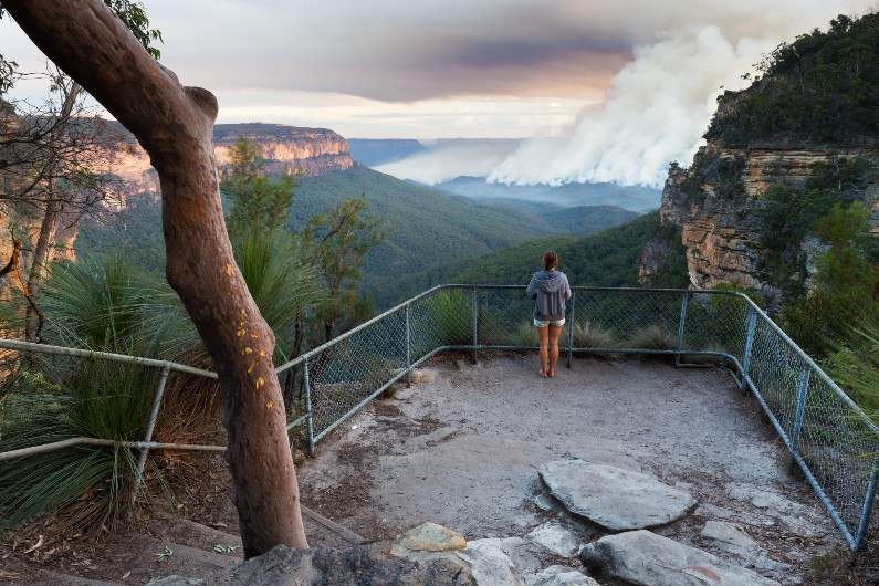 We need to get better at learning how to learn from bushfires