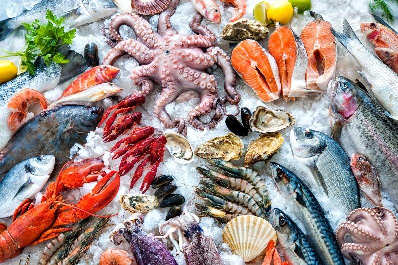 Queensland overhauls fisheries management working groups