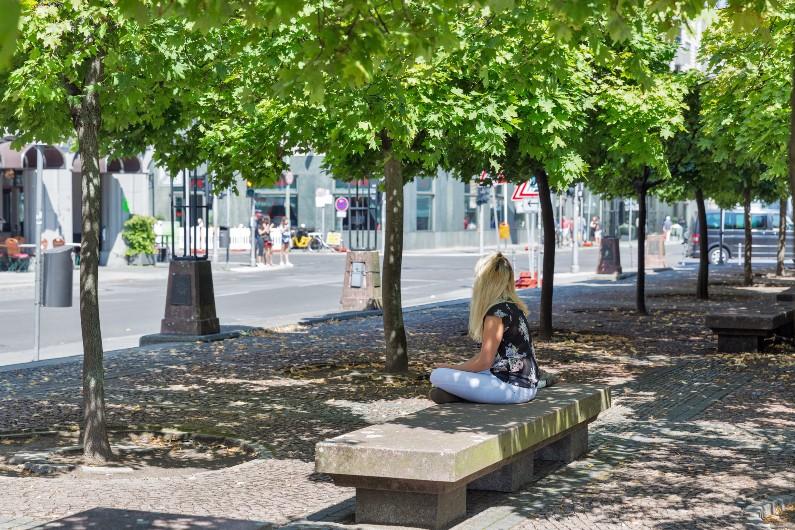 urban-trees