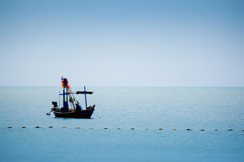 The Pacific scheme gatekeeping fish stocks and raising livelihoods
