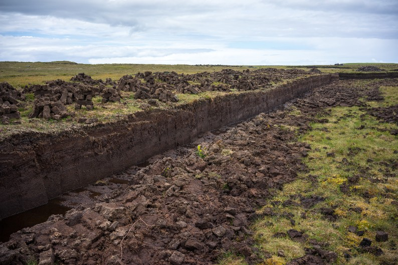 Peatlands worldwide are drying out, threatening to release 860 million tonnes of carbon dioxide everyyear