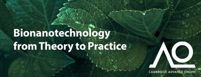 Bionanotechnology from Theory to Practice image