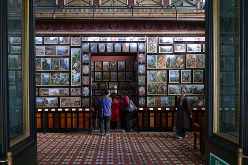 If I could go anywhere: a world through the eyes of botanical artist Marianne North at KewGardens