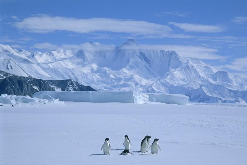 PM: Antarctica facing 'unprecedented challenges'